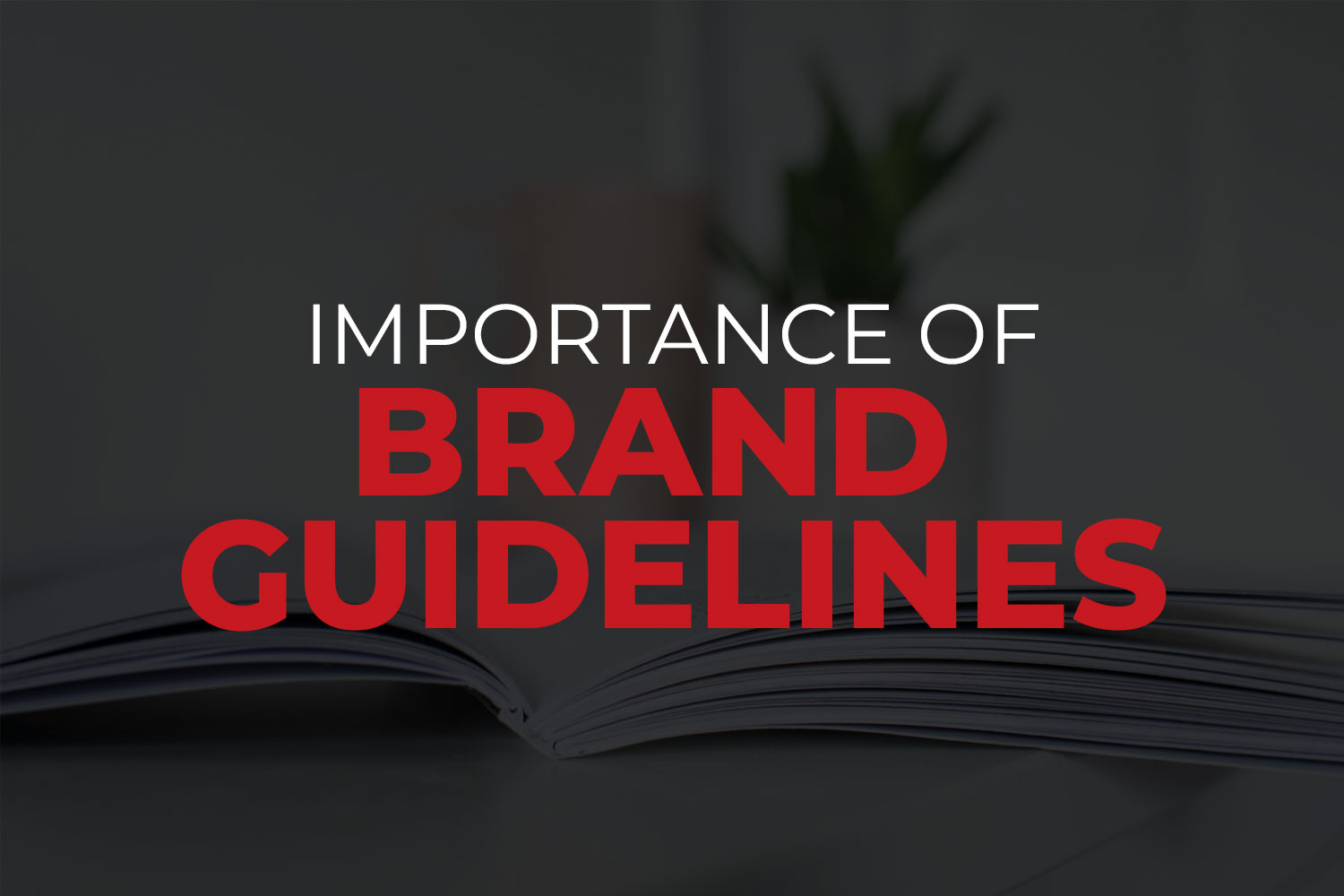 Brand guidelines blog - featured